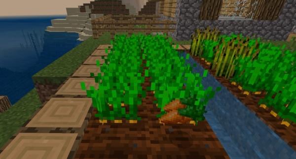 マイクラ 幸運で増える農作物