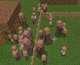 村人 繁殖