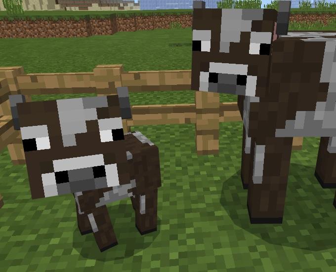 【マイクラ】牛の特徴や増やし方などを解説!革をたくさん集めよう