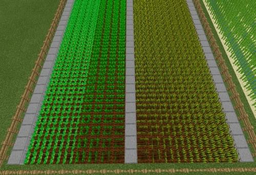 マイクラ 農場簡易モデル