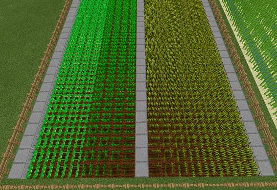 【マイクラ】各種「畑」の作り方や育て方など農業の基本を解説!