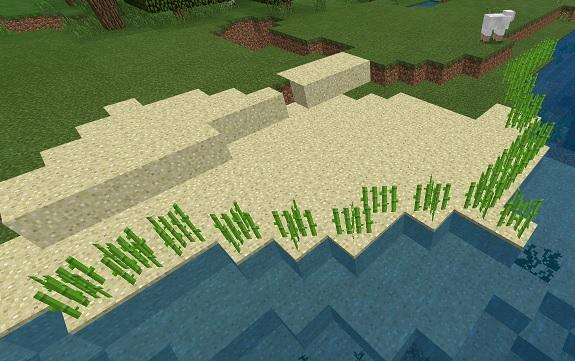 マイクラ 簡易サトウキビ畑