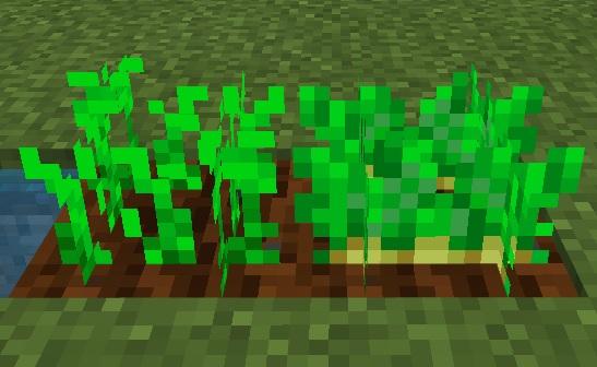 マイクラ ジャガイモ成長
