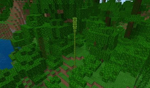 マイクラ ジャングルの竹