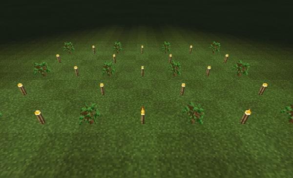 マイクラ 植林明かり