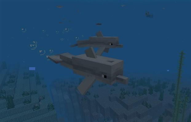 【マイクラ】イルカの概要や捕獲について!海の財宝への案内も!?