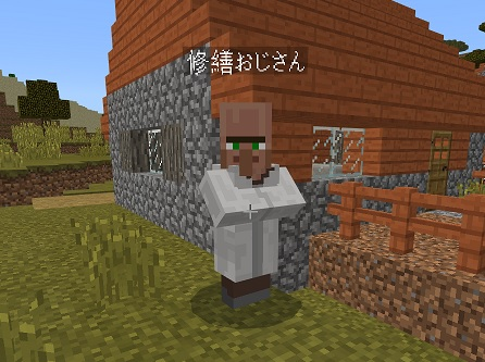 マイクラ 名札村人