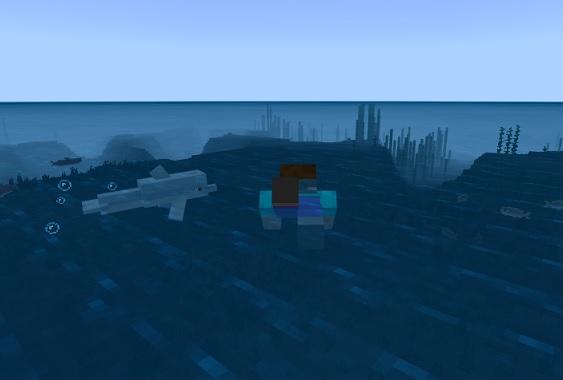 マイクラ イルカ一緒に泳ぐ