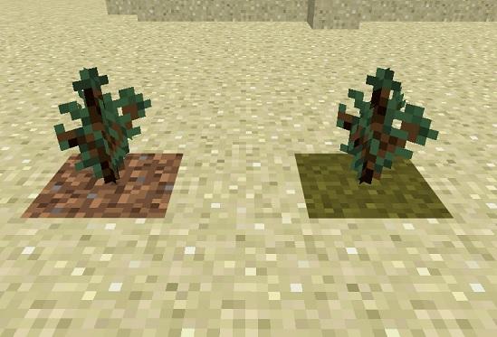マイクラ 植林可能なもの