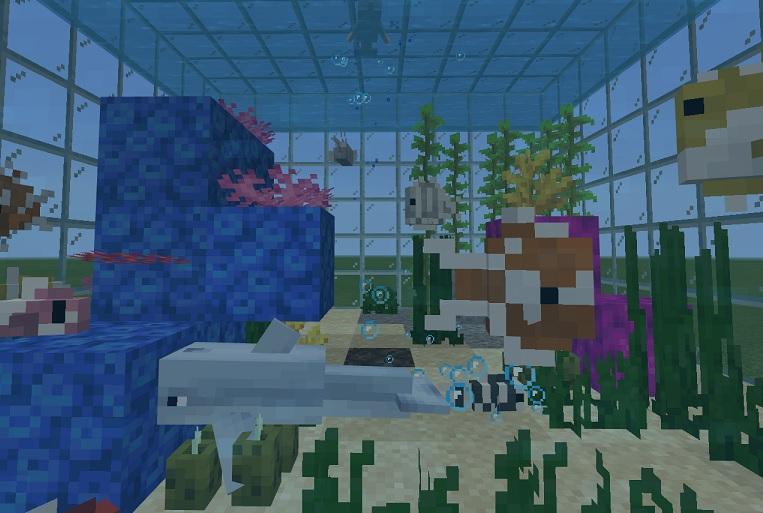 【マイクラ】水槽に動物を入れよう!それぞれの動物の集め方を解説