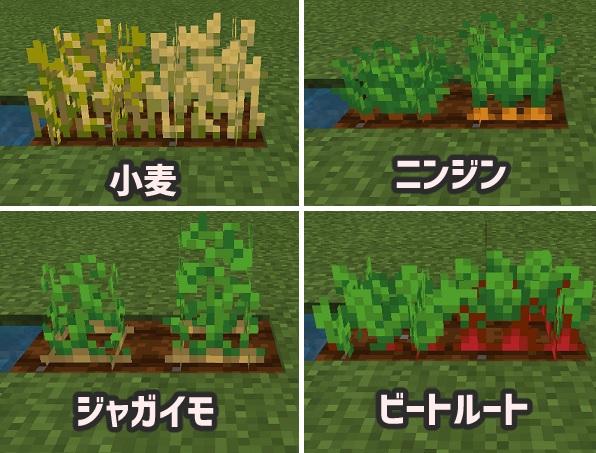 マイクラ 作物の成長度