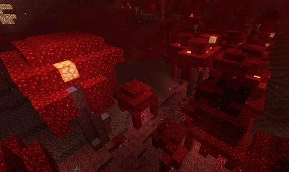 マイクラ 真紅の森