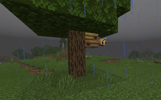 マイクラ 雨とミツバチ
