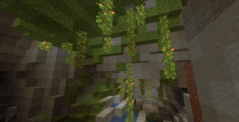 マイクラ 繁茂した洞窟