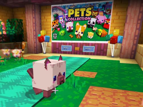 マイクラ 世界テンプレート PETSのプレイの様子