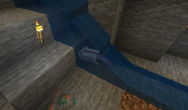 マイクラ ウーパールーパーと洞窟