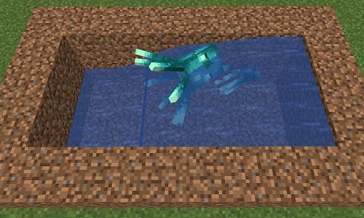 マイクラ 水流に逆らうヒカリイカ