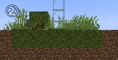 マイクラ 苔ブロックの広がる範囲2