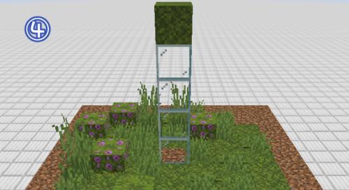 マイクラ 苔ブロックの広がる範囲4