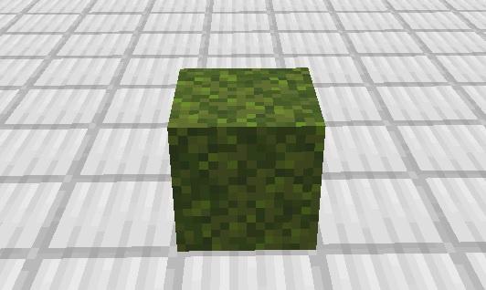 マイクラ 苔ブロック